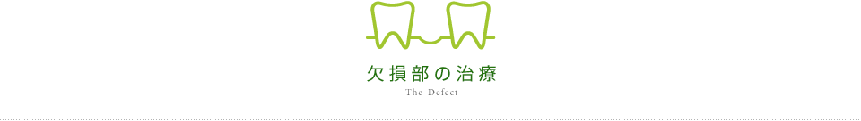 The Defect 欠損部の治療